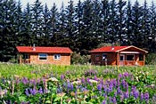 Cabins  Lupine at Blue Heron Bed and Breakfast